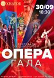 """Відкриття фестивалю """"CXID OPERA 2017"""". Гала-концерт"""