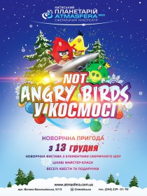 Новорічна вистава «Not Angry birds в Космосі»