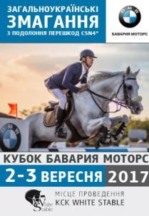 Всеукр. соревнования (Кубок Бавария Моторс'2017)-Финал