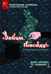 """Театр магии """"Strekoza"""".  """"Зайцы повсюду!"""""""