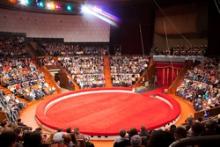 Интернет-Билет начал сотрудничество с Харьковским Цирком